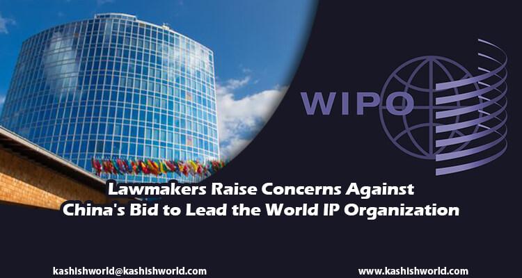 China World IP Organization