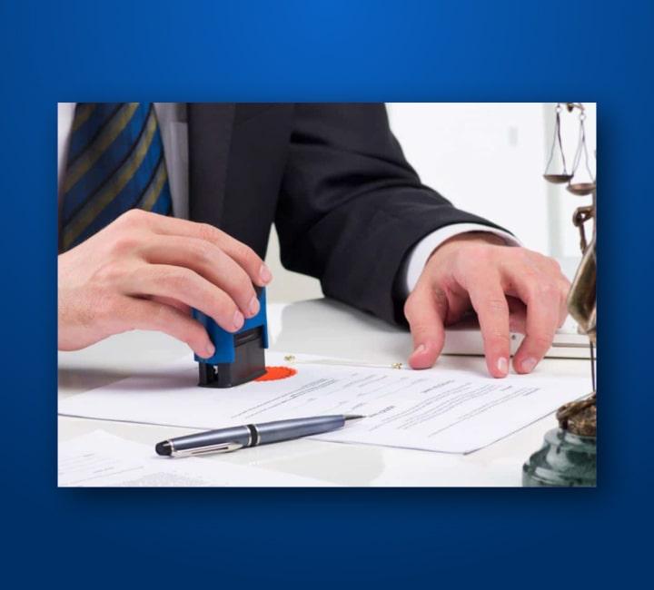 Business Set-Up and Registration