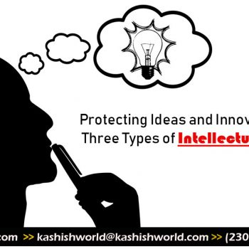 Protecting-Ideas-and-Innovations